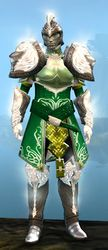 Radiant armor (medium) sylvari male front.jpg