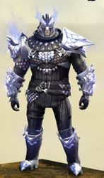 Requiem armor (medium) norn male front.jpg