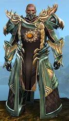 Ornate Guild armor (medium) norn male front.jpg