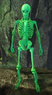 Glow-in-the-Dark Skeleton.jpg