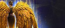 Golden Feather Wings Glider Combo banner.jpg