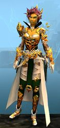 Leystone armor (light) sylvari female front.jpg