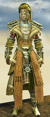 Spearmarshal's armor (light) sylvari male front.jpg