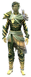 Carapace armor (light) sylvari male front.jpg
