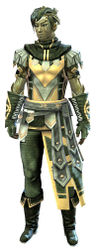 Vigil's Honor armor (light) sylvari male front.jpg