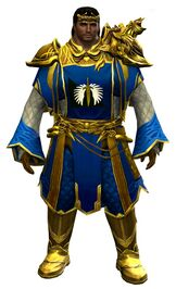 Ornate Guild armor (light) norn male front.jpg