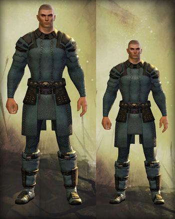 Physical Appearancehuman Guild Wars 2 Wiki Gw2w