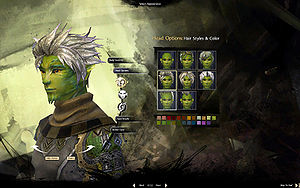 Character Creation Guild Wars 2 Wiki Gw2w
