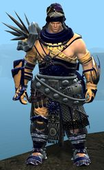 Spearmarshal's armor (heavy) norn male front.jpg