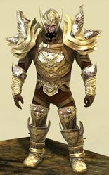 Ardent Glorious armor (medium) norn male front.jpg