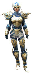 Glorious armor (medium) norn female front.jpg