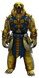 Bear Ceremonial armor norn male front.jpg