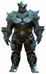 Heavy Plate armor norn male front.jpg