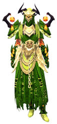 Flame Legion armor (light) norn female front.jpg