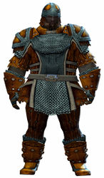 Militia armor norn male front.jpg
