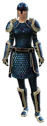 Scale armor norn female front.jpg
