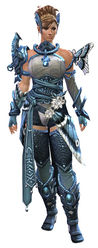Carapace armor (medium) norn female front.jpg