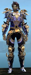 Mistforged Triumphant Hero's armor (medium) sylvari male front.jpg