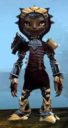 Perfected Envoy armor (medium) asura female front.jpg