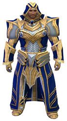 Priory's Historical armor (light) norn male front.jpg