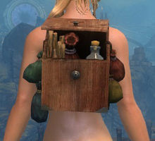 Sturdy Artificer's Backpack.jpg