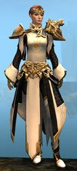 Ornate Guild armor (light) norn female front.jpg
