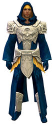 Diviner armor human male front.jpg