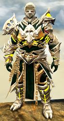 Warbeast armor (medium) norn male front.jpg