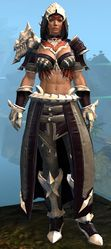 Experimental Envoy armor (medium) norn female front.jpg
