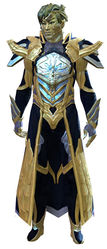 Council Watch armor sylvari male front.jpg