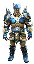 Glorious armor (heavy) norn male front.jpg