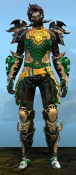 Triumphant Hero's armor (medium) sylvari male front.jpg