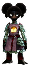Guild Defender armor asura female front.jpg