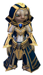Priory's Historical armor (light) asura male front.jpg