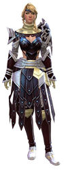 Vigil's Honor armor (medium) human female front.jpg