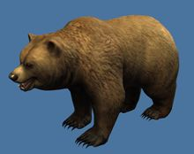 Mini Brown Bear.jpg