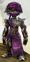 Spearmarshal's armor (medium) asura male front.jpg