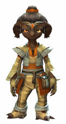 Country armor asura male front.jpg