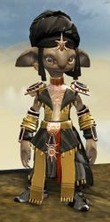 Elonian armor (light) asura male front.jpg