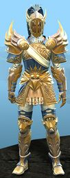 Luminous armor (heavy) human male front.jpg