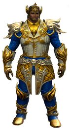 Luminous armor (light) norn male front.jpg