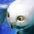 Mini Snow Owl.png