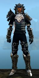Perfected Envoy armor (medium) human male front.jpg