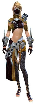 Assassin's armor human female front.jpg