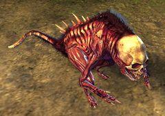 Bone Minion - Guild Wars 2 Wiki (GW2W) 0174ba64d92