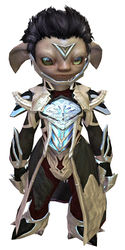 Council Watch armor asura male front.jpg