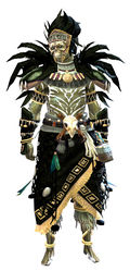 Tribal armor sylvari male front.jpg