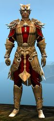 Triumphant armor (light) human male front.jpg