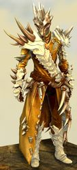 Bounty Hunter's armor (medium) sylvari male front.jpg
