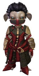 Rawhide armor asura male front.jpg